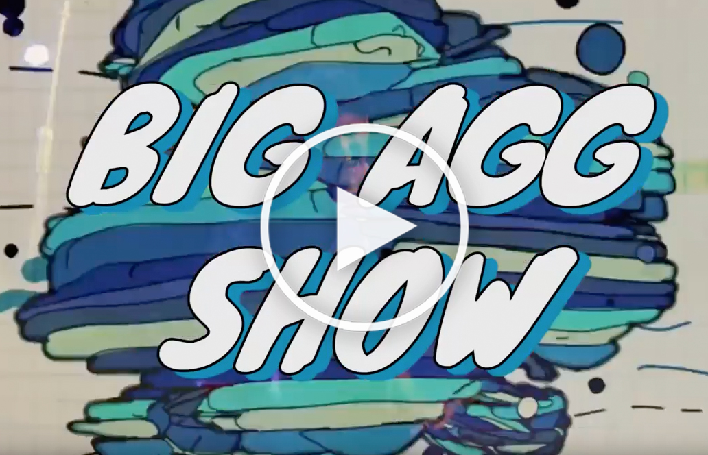 Big Agg Show Music Festival and Dance 2016